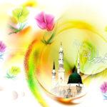La Sunnah del Profeta Muhammad (S) come Fonte di Guida (S.M. Rizvi)